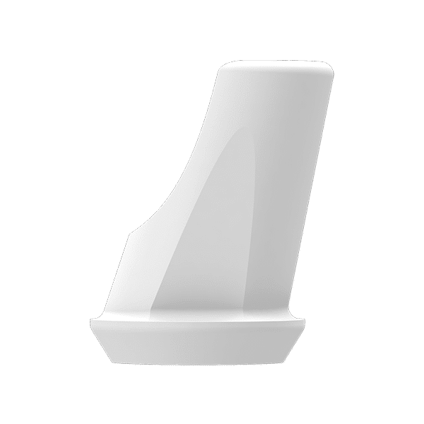 P6 Abutment - SN Abutment(incl. Screw) - 15' Angled, 1mm